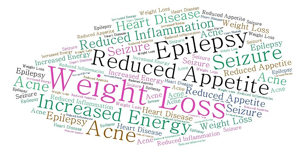weight loss, appetite, inflammation, energy text in cloud